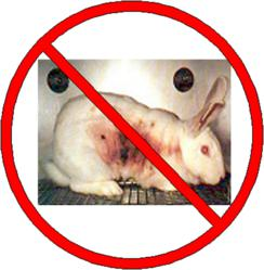 an argument that animal experimentation is cruel and should not be allowed No more animal cruelty will be allowed) this was in part because of the increase in the numbers used in animal research—300 in the uk in 1875, 19,084 in 1903, and 28 million the encyclopedia of animal rights and animal welfare greenwood chapouthier, georges and nouët.
